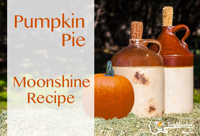 pumpkin-pie-moonshine-recipe